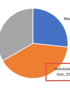 How to fix wrapped data labels in  pie chart also sage intelligence rh sageintelligence