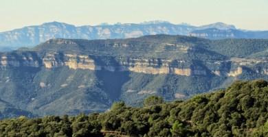 MONTSENY : SORTIDA EL 27/6/2020 Sortida al Montseny
