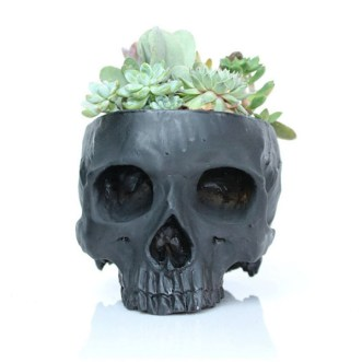 Halloween Decor Favorites | Sophisticated Halloween Decorations | Sage to Silver