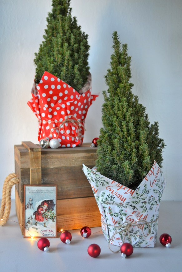 easy christmas decor christmas decor ideas christmas holiday holiday decor