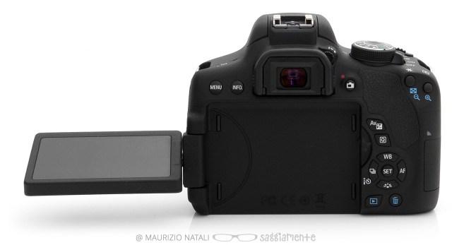 750d-minino-display