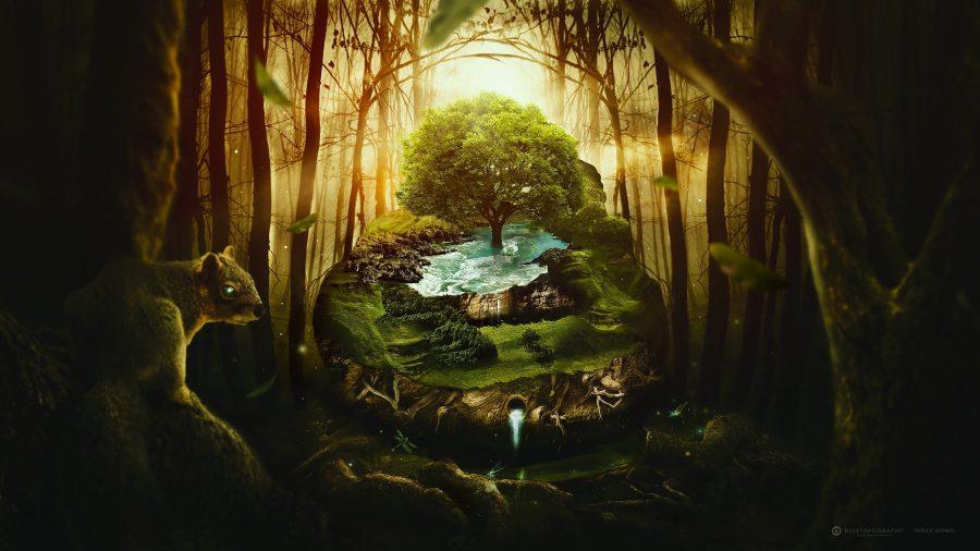 Ogham albero