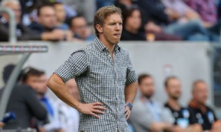 Hoffenheim's Julian Nagelsmann coy on Bayern job after Carlo Ancelotti axe
