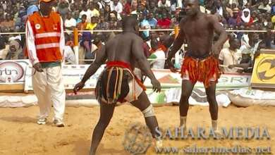 Photo of المصارعة في النيجر.. تقليد لإثبات أن القُرى شبعتْ