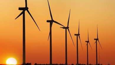 Photo of موريتانيا: شركة الكهرباء تستثمر فى مكافحة التلوث البيئي