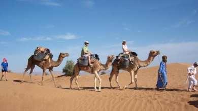 """Photo of موريتانيا.. وصول ألف سائح إلى منطقة """"آدرار"""""""