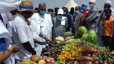 Photo of الحكومة تنقل المنتوج المحلي من الخضروات