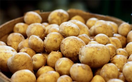 فوائد-البطاطا-للصحة--والبطاطا-الحلوة
