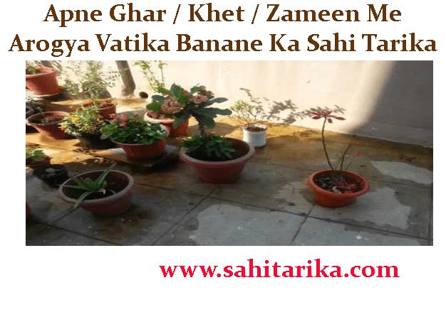 Apne Ghar / Khet / Zameen Me Arogya Vatika Banane Ka Sahi Tarika