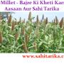 Pearl Millet - Bajre Ki Kheti Karne Ka Aasaan Aur Sahi Tarika