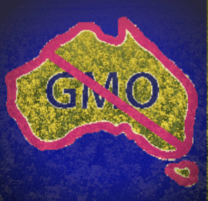Australian Moratorium on GM Canola