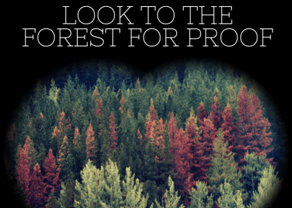 Still Unsure of Climate Change? Take to the Forest for Proof