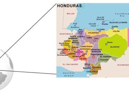 GM Corn Impact in Honduras