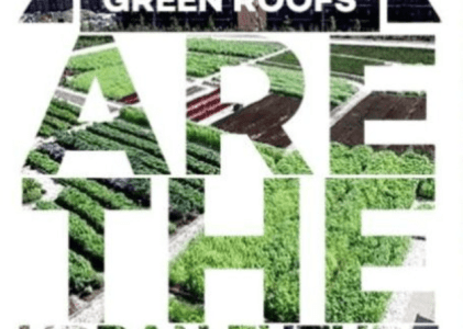 Using Green Roofs to Reduce Urbanization Pollution and Environmental Damage
