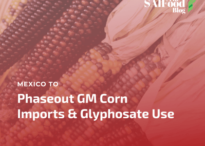 Mexico to Phaseout GM Corn Imports and Glyphosate Use