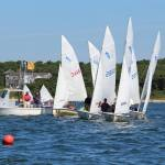 Club Profile: Buzzard's Sailing School