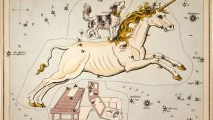 ROI e social media. Esiste l'unicorno?