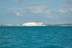 Coral Cliffs