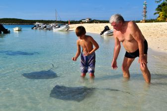 Sting Ray Play time.
