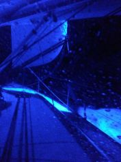 Pitch Black with the Blue Spreader LIghts