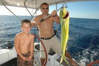 4 ft, 45lb Mahi Mahi, Sometimes called Dorado or Dolphin.