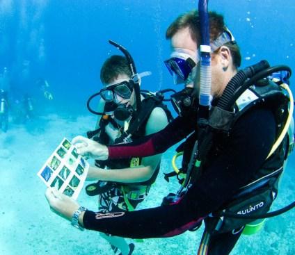 underwater_scuba_staff_instruction