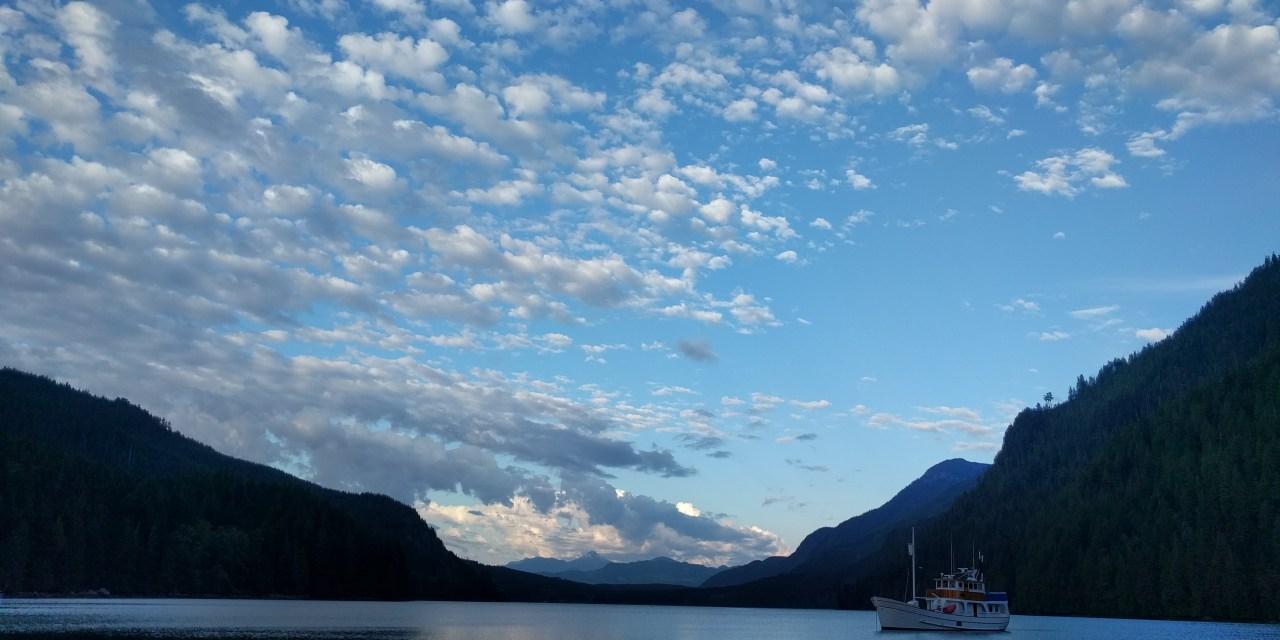 Days 8 to 11 – The Johnstone Strait