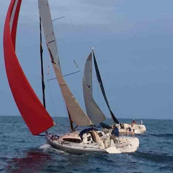 Summer Sailing Camps
