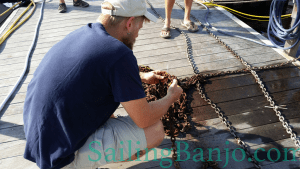 Inspecting the anchor chain