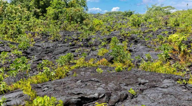 Samoa île Savai'i : Traversée Tahiti – Nouvelle-Zélande (7)