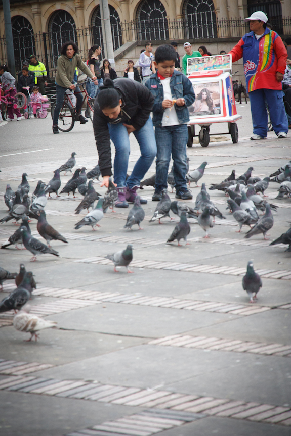 Feeding the Pigeons at Plaza de Boliviar in Bogota Colombia