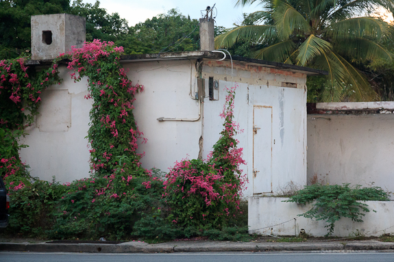 vieques_isabel_house