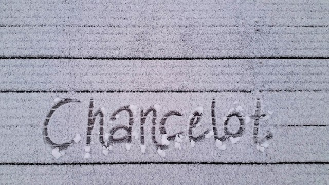 First snow for Chancelot
