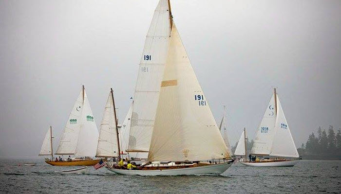The Concordia Camaraderie Gtgt Scuttlebutt Sailing News