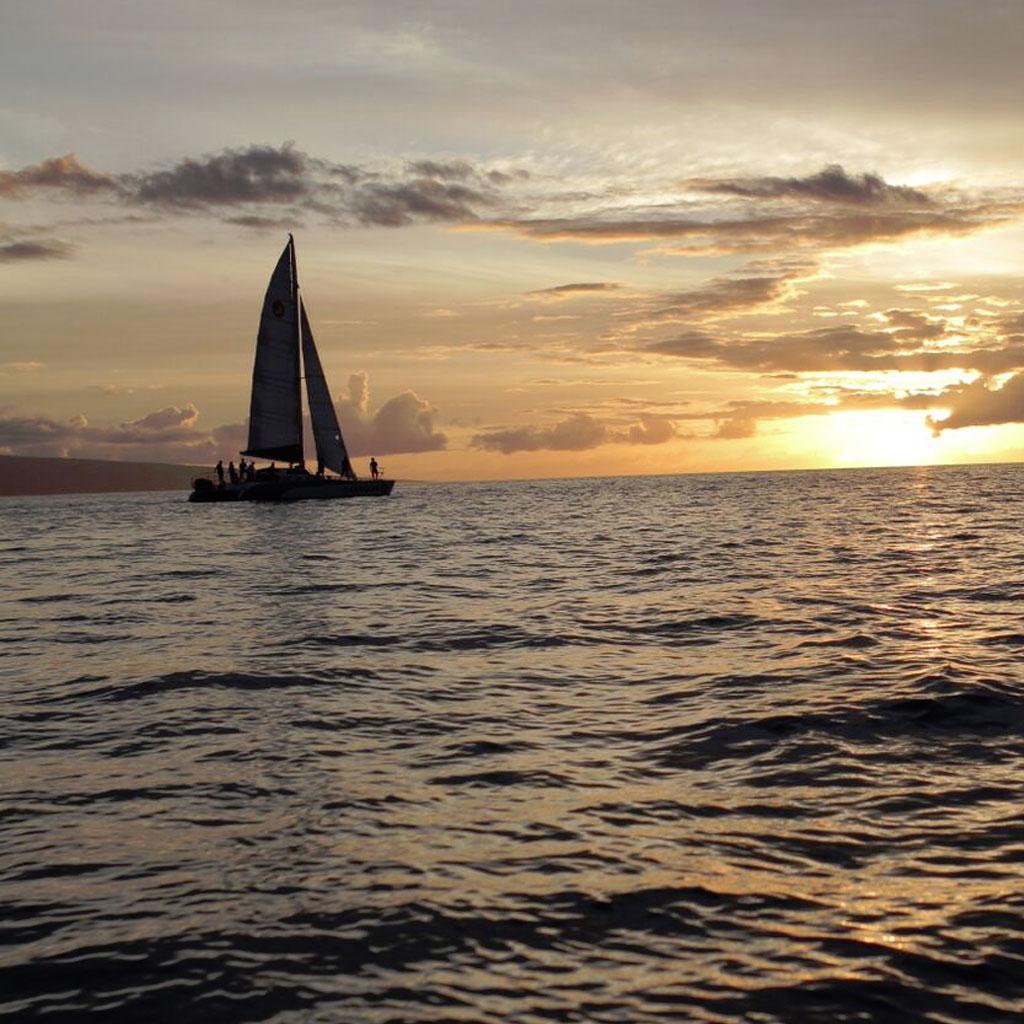 LAHAINA CHAMPAGNE SUNSET Amp PERFORMANCE SAIL Sail Maui