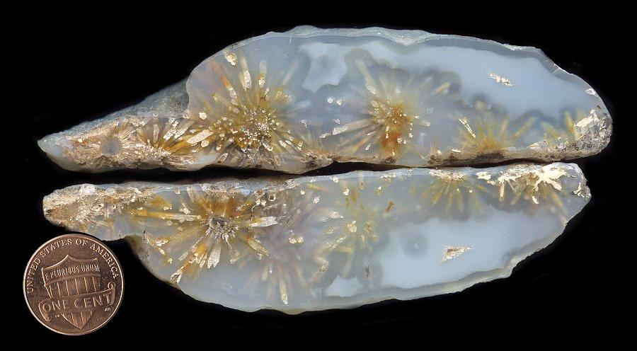 Dwarves Earth Treasures Sagenite Agates from Nipomi
