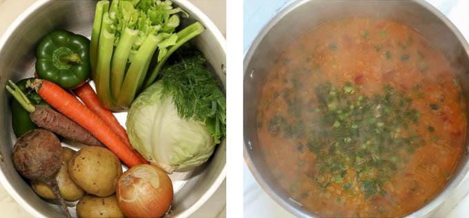 Doukhobor Borsch Soup