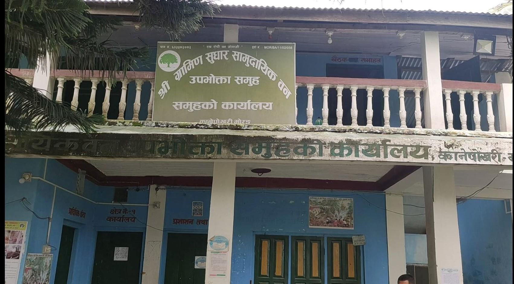 ग्रामीण सुधार सामुदायीक वनमा आर्थिक अनियमितता लुकाउन काठ कुहिएको बाहाना