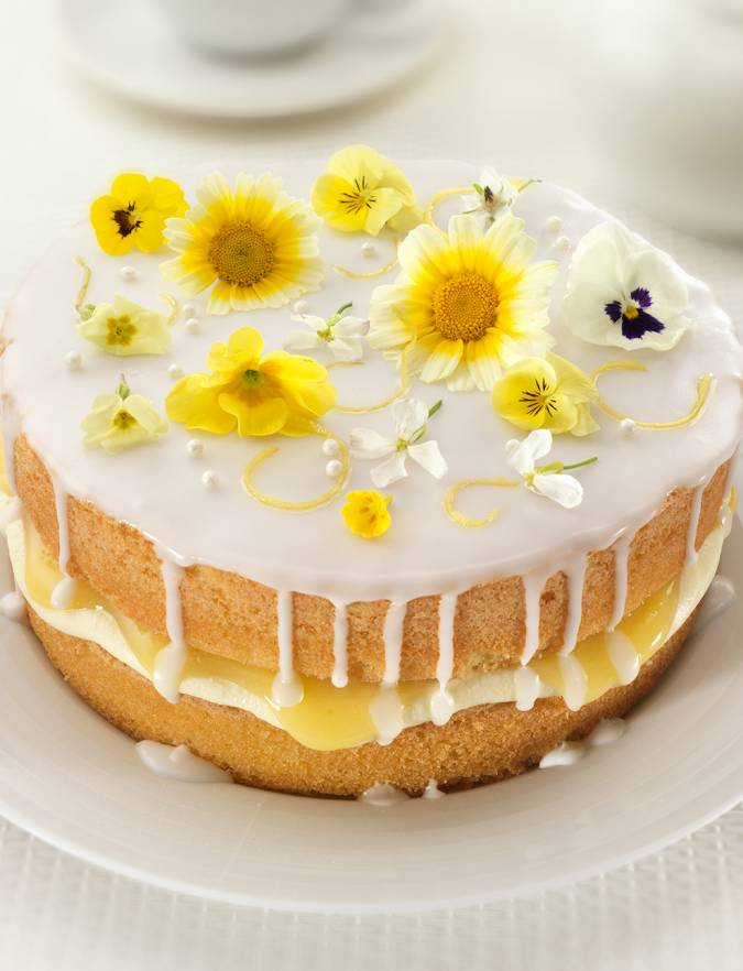 Easy Cake Recipes Mary Berry