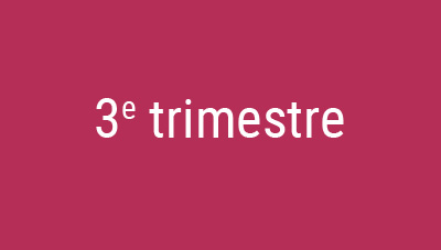 Trimestre 3