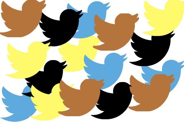 twitter diversity