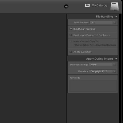 lightroom adjust preview settings