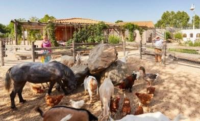 Mini ferme pédagogique Fête de la Bugne
