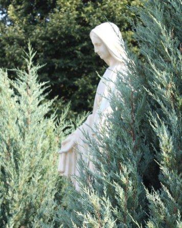 Mary #3: 2018