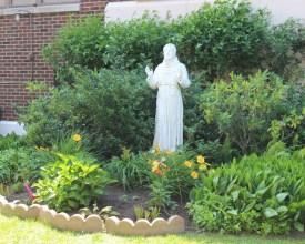 St Francis: Yard