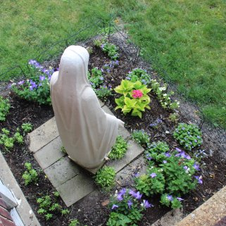 Mary Garden in Convent Yard