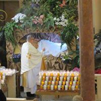2013 Fr Ron Bagienski