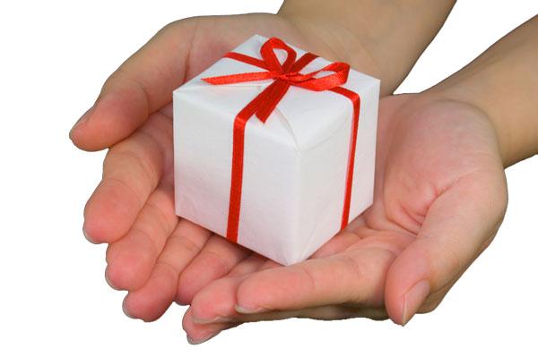Matching Gifts to Saint Martin de Porres Academy