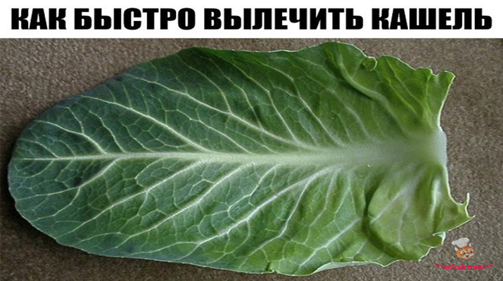 kak_bistro_vilechit_kashel