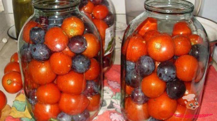 pomidory-so-slivami-na-zimu